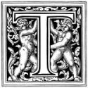 ucase-T- angels